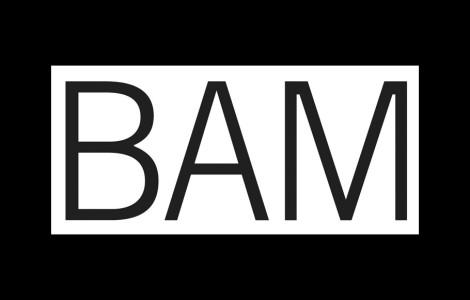 BAM_Slider